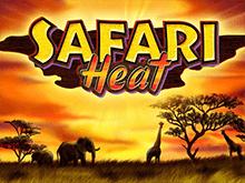 игровой автомат Safari Heat / Жара Сафари / Сафари / Сафари Хит