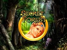 игровой автомат Secret Forest / Таинственный Лес